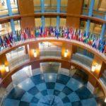 The International Finance Corporation (IFC): Applying for Financing Part 2