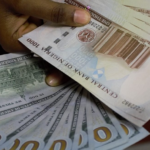 Naira falls in the parallel market