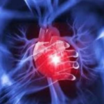 HEART DISEASE: Heart attack, symptoms, causes, and control