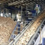 Cassava Processing Gets US$500m Boost by an Investment Consortium