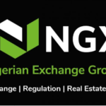 Nigerian Stock Exchange's new look (NGX Group): Brand Identity and Website
