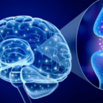 Low blood flow in the brain may be an early sign of Parkinson's disease