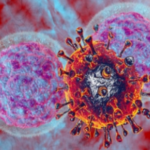 Scientist Learn What Fuels the 'Natural Killers' of the Immune System