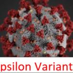 Epsilon Variant Mutations Contribute to COVID Immune Evasion